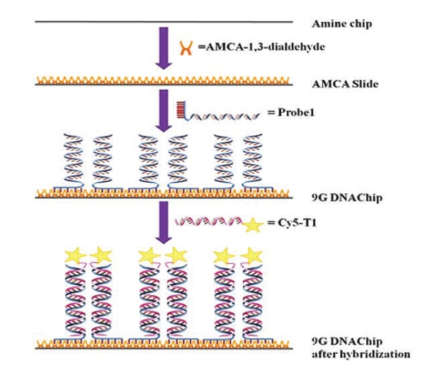 Gene-chip Platform