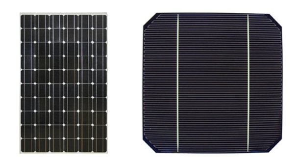Solar Cell and Module