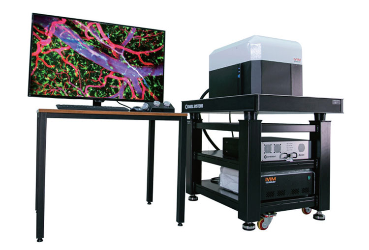 All-in-One Intravital Two-Photon Microscopy System