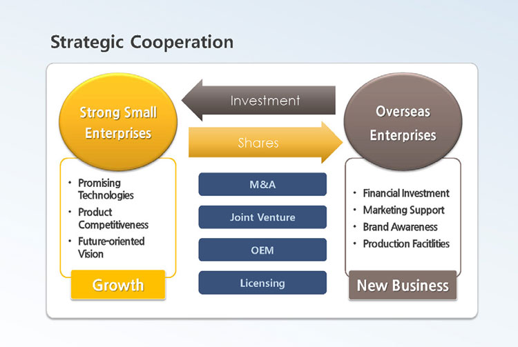 Promoting Strategic Cooperation Between Strong Small Enterprises and Overseas Enterprises